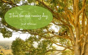 Walt Whitman quotation