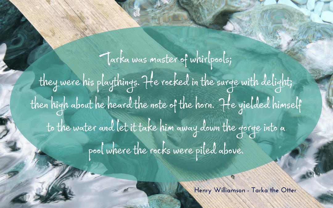 quotation - Henry Williamson - Tarka the Otter