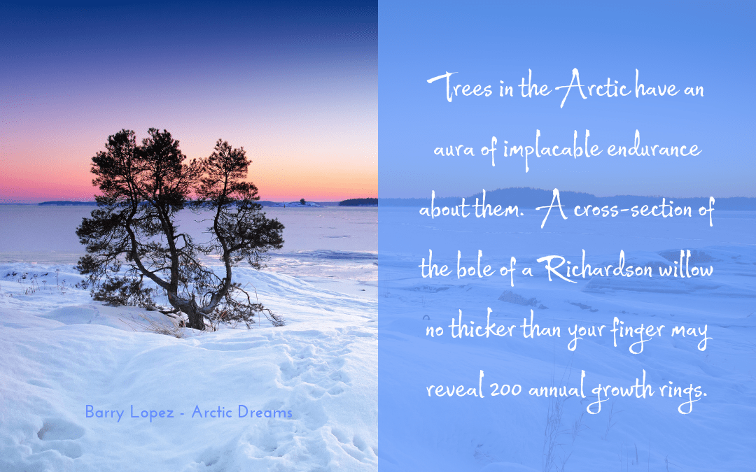 Barry Lopez - Arctic Dreams - quotation trees