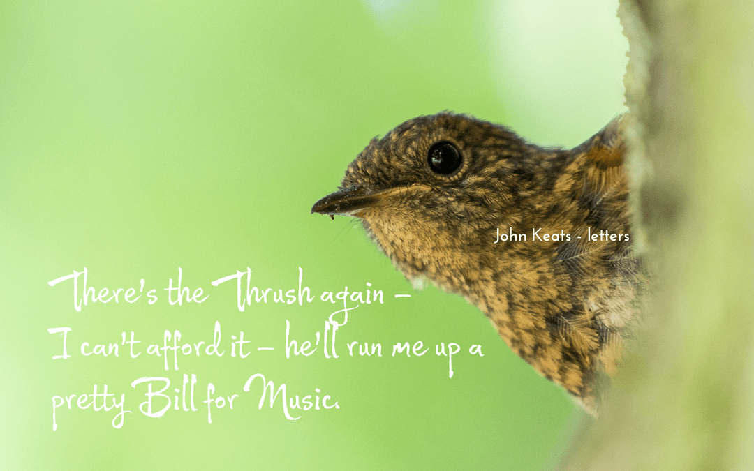Quotation - John Keats - letters - a singing thrush