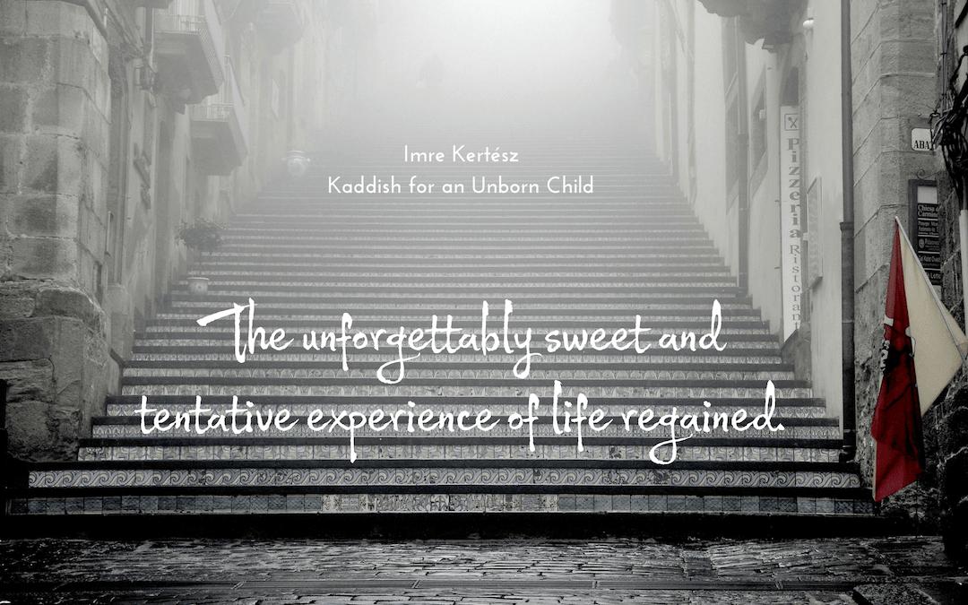 Imre Kertész - Kaddish for an Unborn Child - quotation