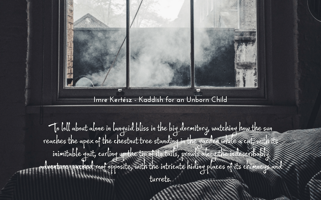Imre Kertész - Kaddish for an Unborn Child - quotation