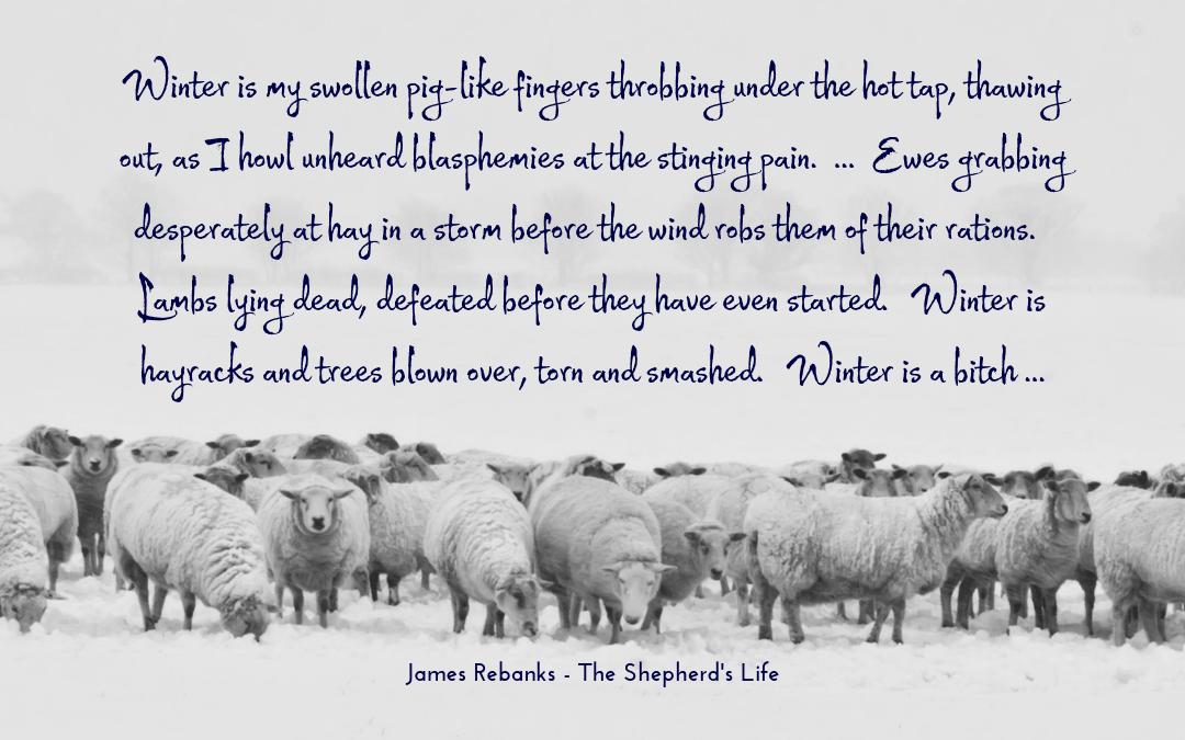 James Rebanks - Shepherd's Life - quotation winter