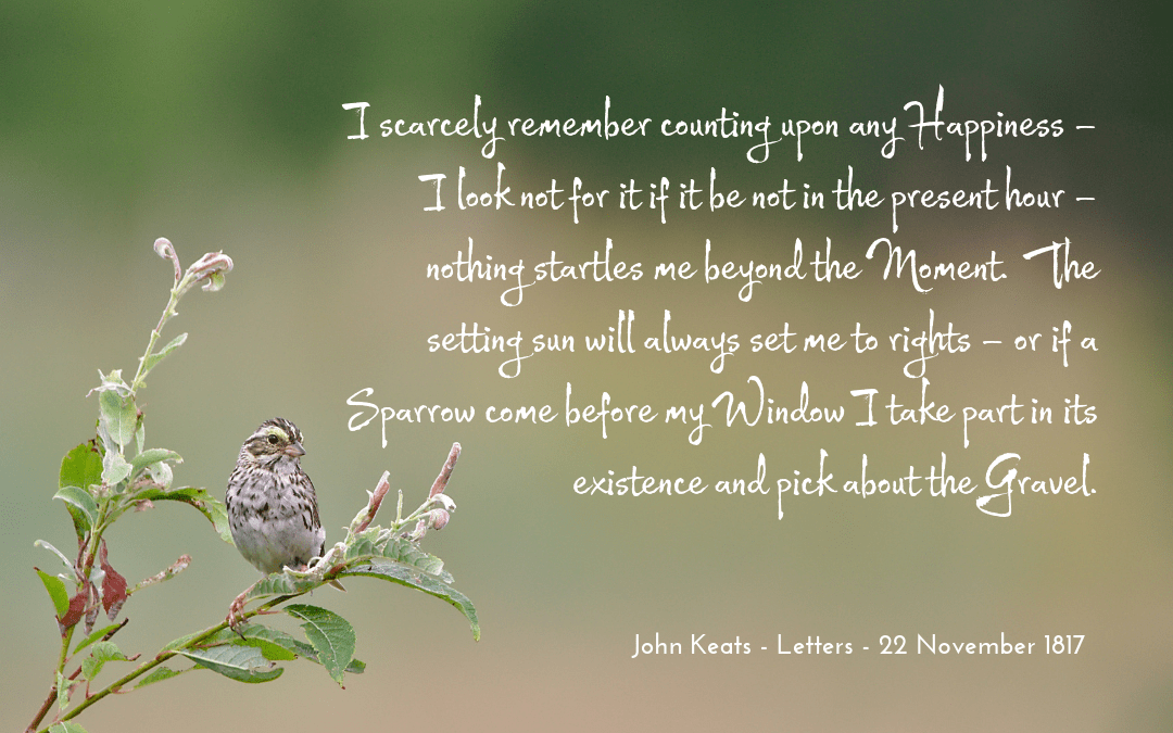 Keats - letters - quotation