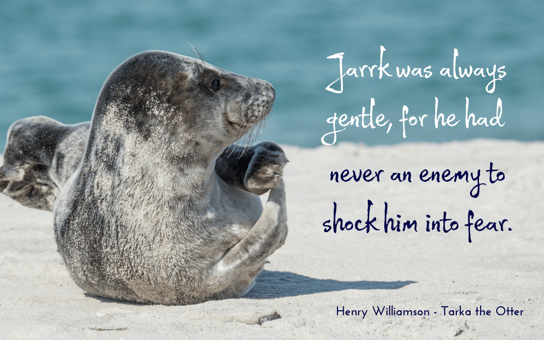 Henry Williamson - Tarka the Otter - quotation