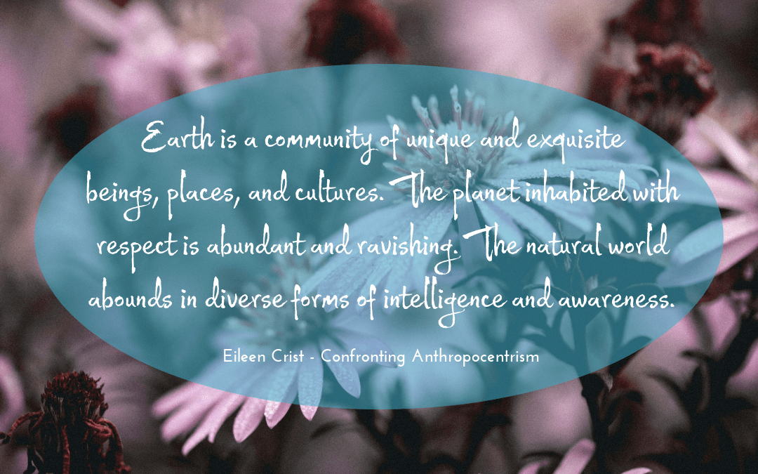 Photo credit: pascalwiemers at pixabay.com   I   quotation: Eileen Crist on 'Confronting Anthropocentrism'