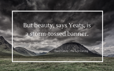 The banner of beauty