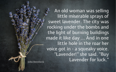 Luck be lavender tonight