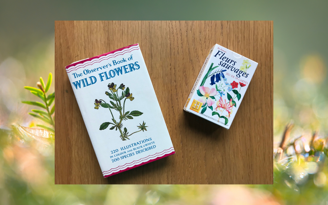 Book cover - Observer book of Wild Flowers