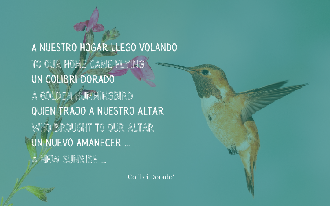 Quotation - song Colibri Dorado
