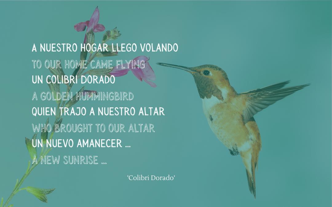 Quotation - song Colibri Dorado