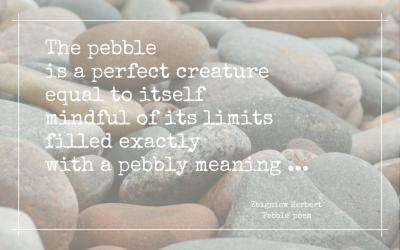 Pebble pusher (ii)